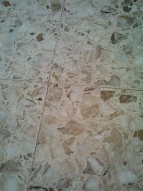 floor pic 2